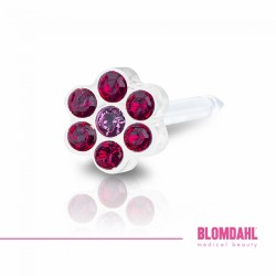 Blomdahl DAISY 5mm Ruby/ Rose
