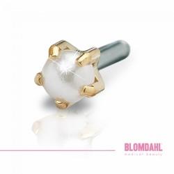 Blomdahl Zloty Tytan Medyczny Tiffany 4 mm Pearl